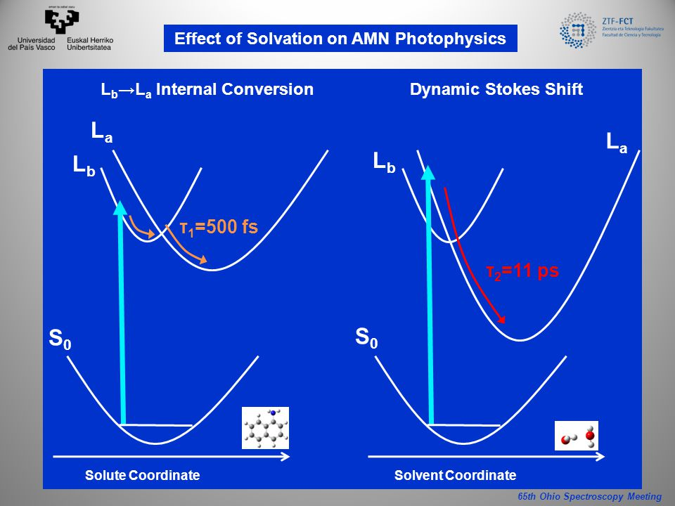 65th Ohio Spectroscopy Meeting Effect of Solvation on AMN Photophysics S0S0 τ 1 =500 fs LbLb LaLa Solute Coordinate L b →L a Internal Conversion S0S0 Solvent Coordinate τ 2 =11 ps LbLb LaLa Dynamic Stokes Shift