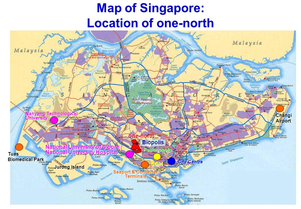 Labour-intensive Skills-intensive Capital-intensive Technology-intensive Innovator of new products & services Knowledge- Intensive Singapore's Economic Progress Keep moving up .