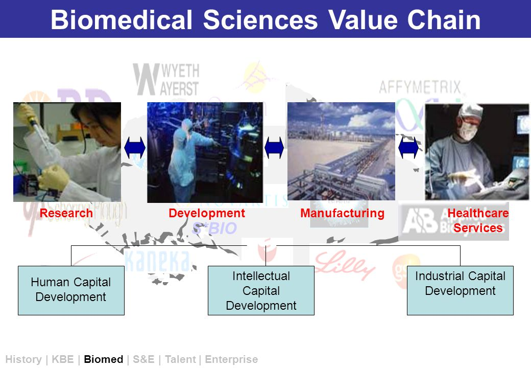 S*BIO ResearchDevelopmentManufacturingHealthcare Services Human Capital Development Intellectual Capital Development Industrial Capital Development Biomedical Sciences Value Chain History | KBE | Biomed | S&E | Talent | Enterprise