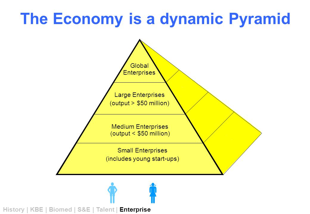 The Economy is a dynamic Pyramid    Global Enterprises Large Enterprises (output > $50 million) Medium Enterprises (output < $50 million) Small Enterprises (includes young start-ups) History | KBE | Biomed | S&E | Talent | Enterprise