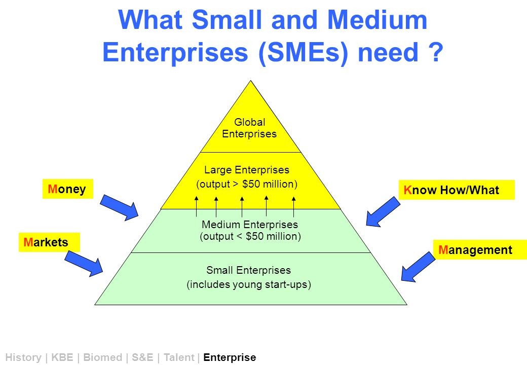 What Small and Medium Enterprises (SMEs) need .