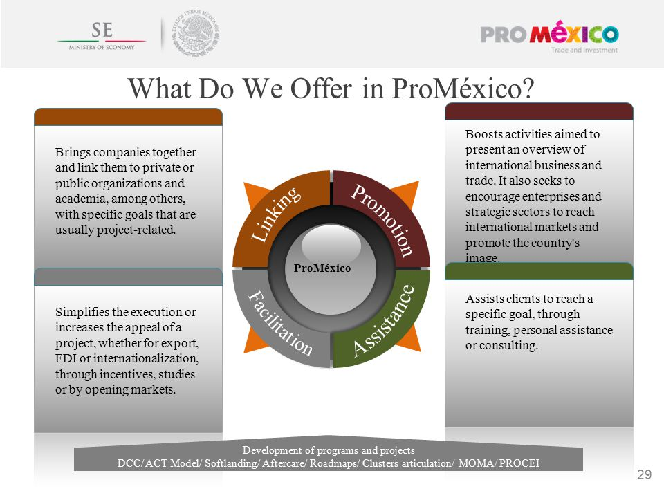 What Do We Offer in ProMéxico.