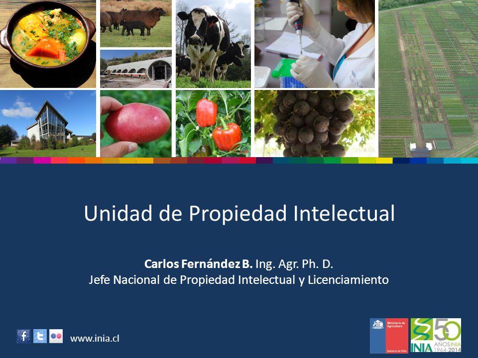 www.inia.cl Unidad de Propiedad Intelectual Carlos Fernández B. Ing. Agr. Ph. D. Jefe Nacional de Propiedad Intelectual y Licenciamiento