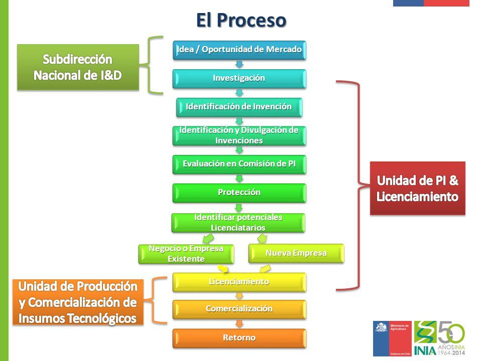 El Proceso Idea / Oportunidad de Mercado Investigación Identificación de Invención Identificación y Divulgación de Invenciones Evaluación en Comisión