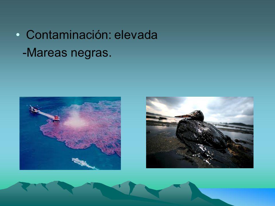 Contaminación: elevada -Mareas negras.