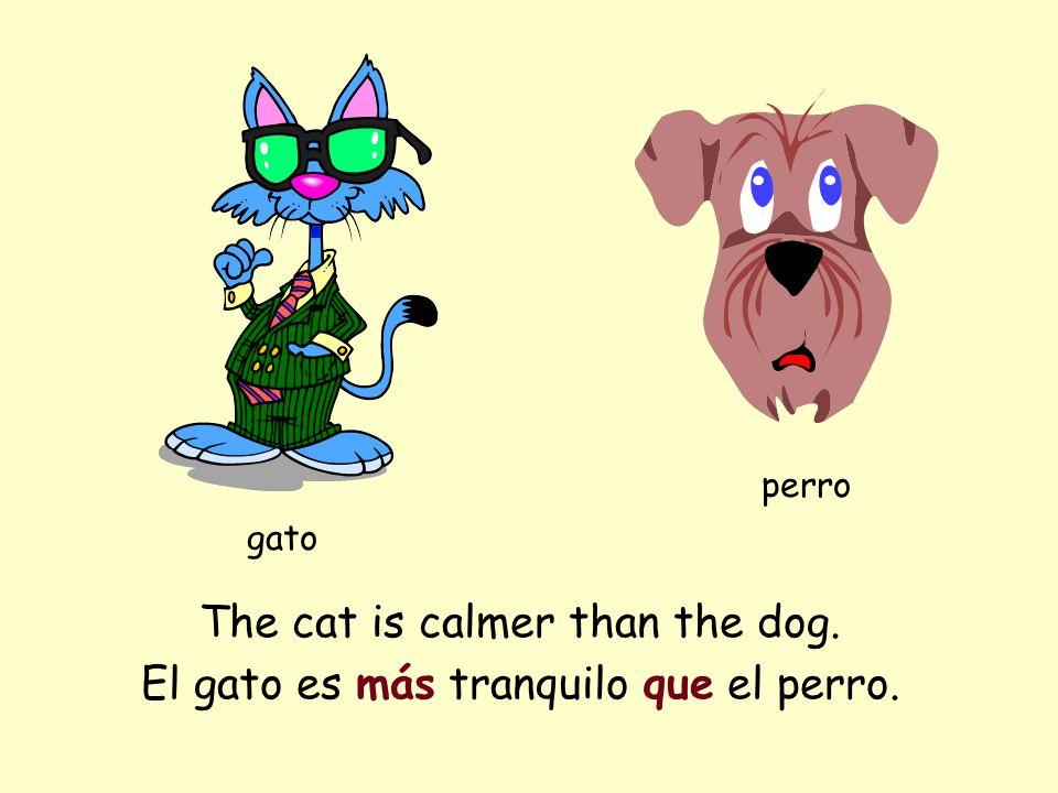The cat is calmer than the dog. gato perro El gato es más tranquilo que el perro.