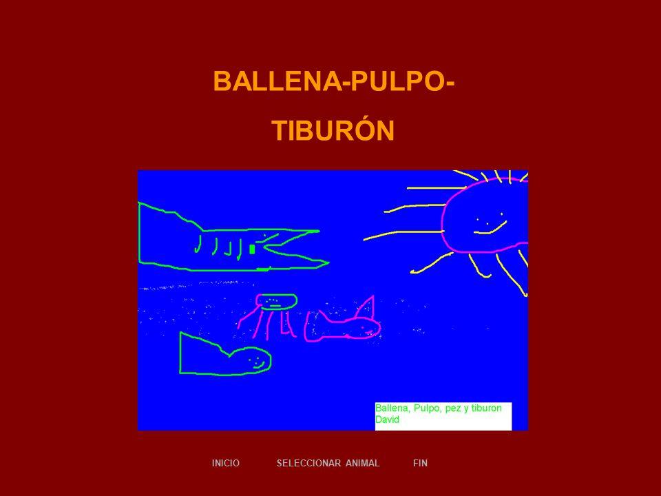 BALLENA-PULPO- TIBURÓN -DAVID- SELECCIONAR ANIMALINICIOFIN