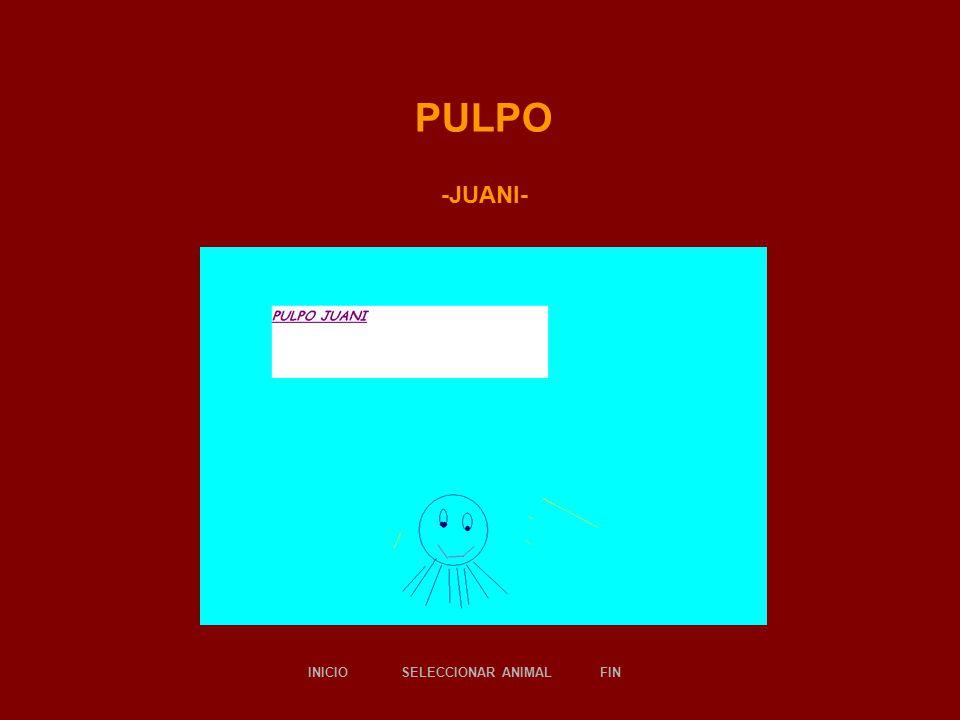PULPO -JUANI- SELECCIONAR ANIMALINICIOFIN