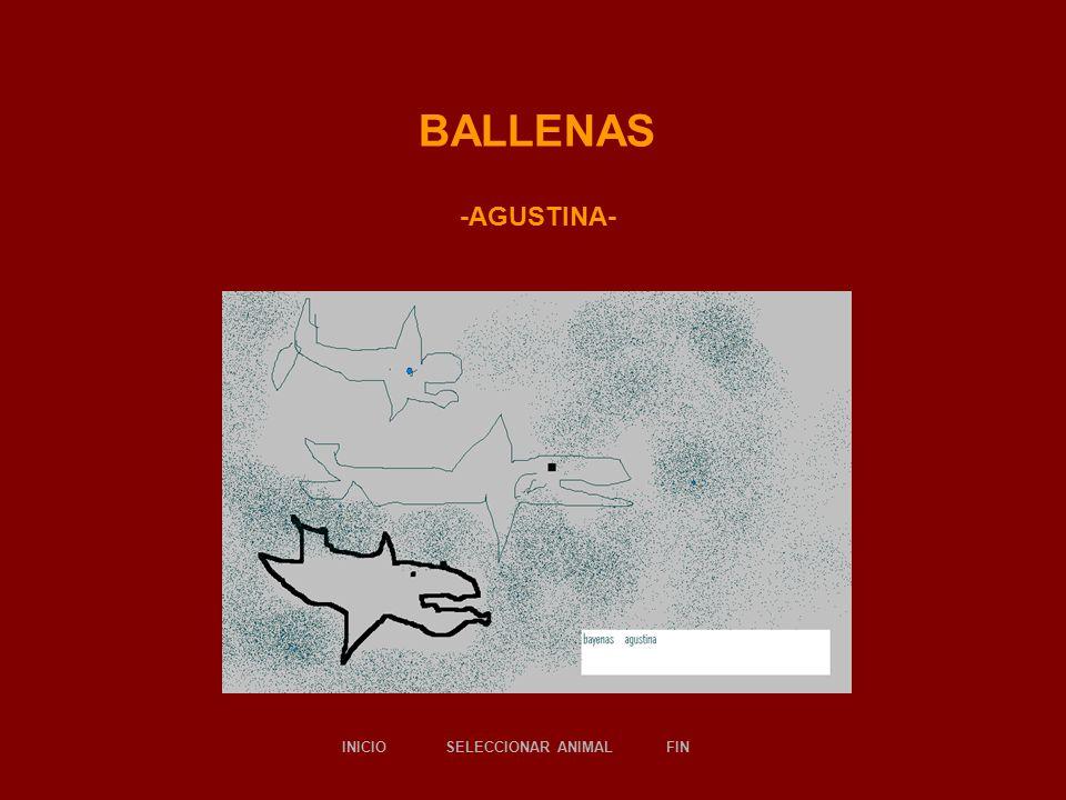 BALLENAS -AGUSTINA- SELECCIONAR ANIMALINICIOFIN