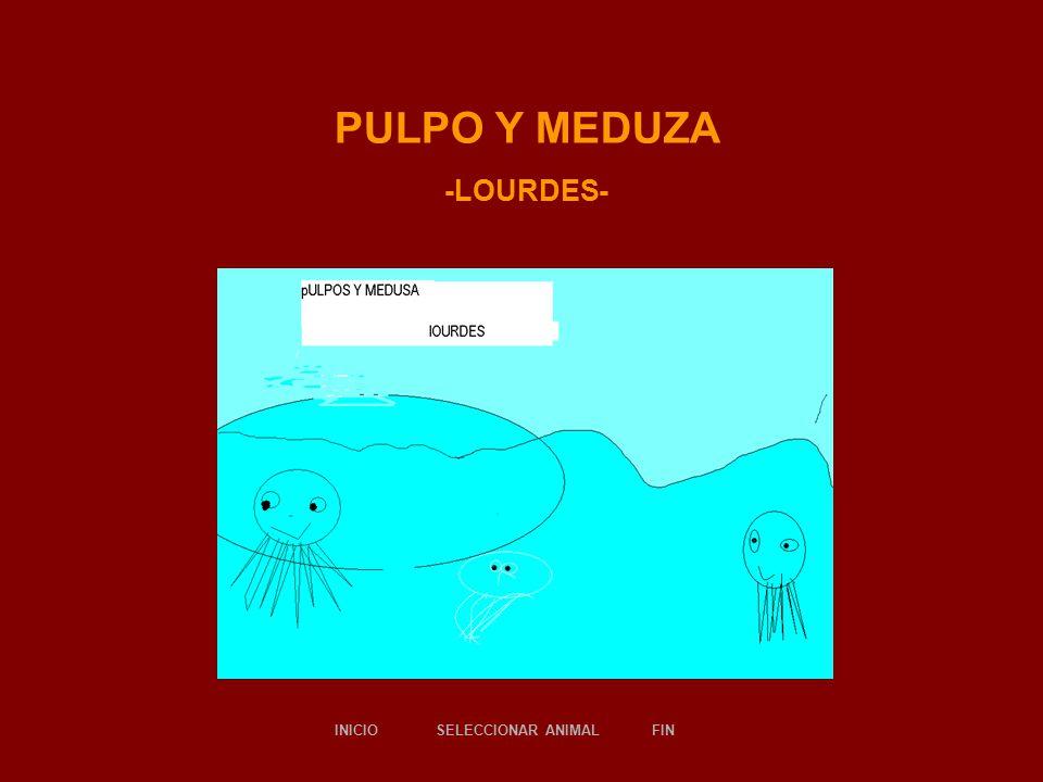 PULPO Y MEDUZA -LOURDES- SELECCIONAR ANIMALINICIOFIN