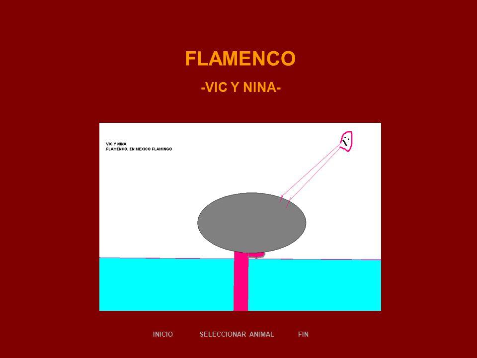 FLAMENCO -VIC Y NINA- SELECCIONAR ANIMALINICIOFIN