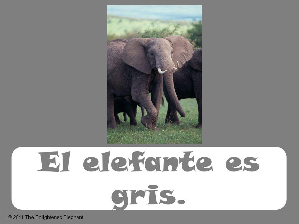 El elefante es gris. © 2011 The Enlightened Elephant