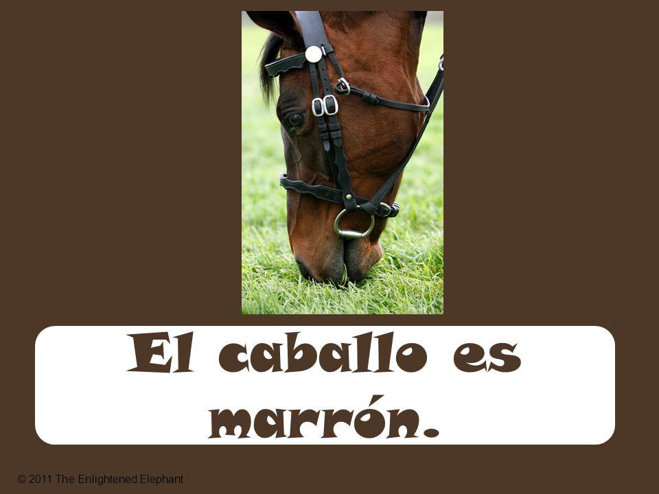 El caballo es marrón. © 2011 The Enlightened Elephant