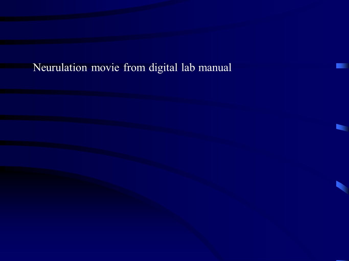 Neurulation movie from digital lab manual
