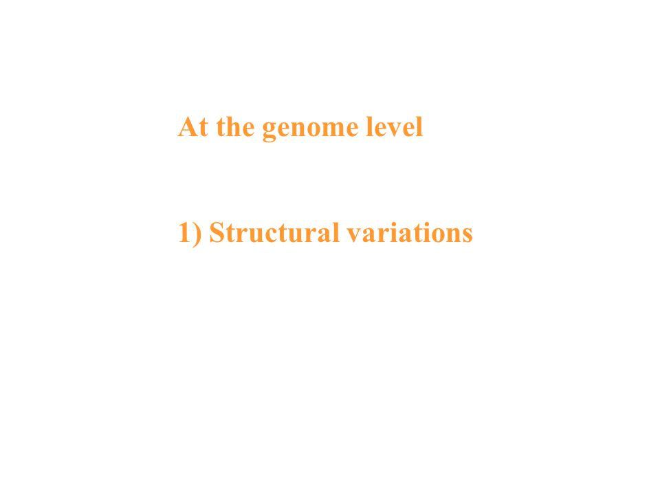 At the genome level 1) Structural variations