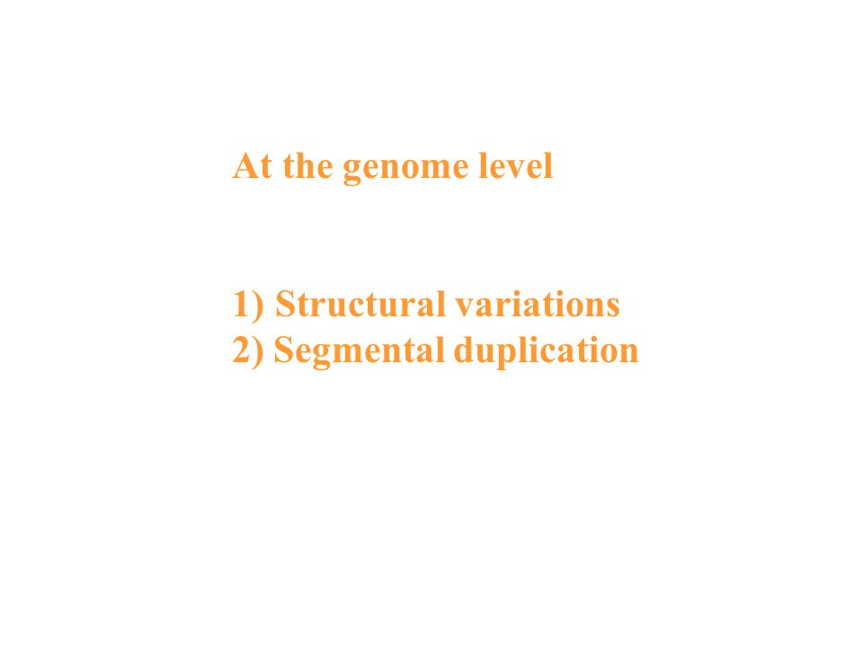 At the genome level 1)Structural variations 2) Segmental duplication