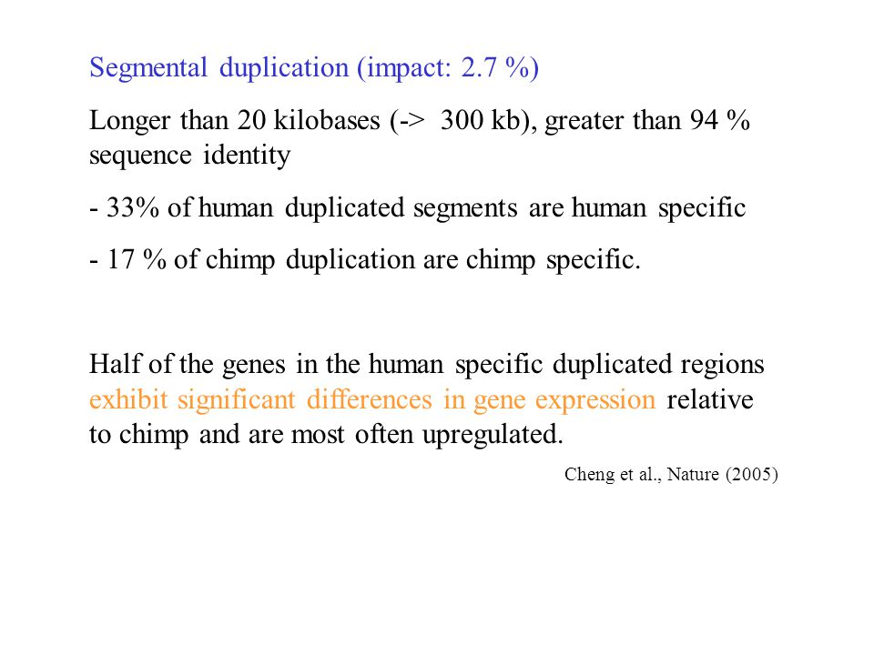 Segmental duplication (impact: 2.7 %) Longer than 20 kilobases (-> 300 kb), greater than 94 % sequence identity - 33% of human duplicated segments are human specific - 17 % of chimp duplication are chimp specific.