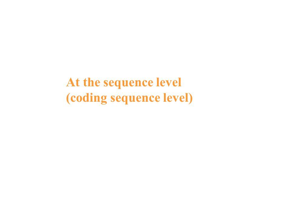 At the sequence level (coding sequence level)