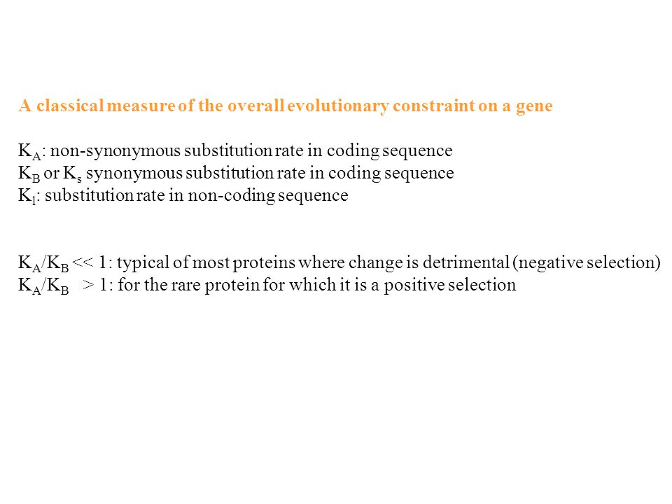 A classical measure of the overall evolutionary constraint on a gene K A : non-synonymous substitution rate in coding sequence K B or K s synonymous substitution rate in coding sequence K l : substitution rate in non-coding sequence K A /K B << 1: typical of most proteins where change is detrimental (negative selection) K A /K B > 1: for the rare protein for which it is a positive selection