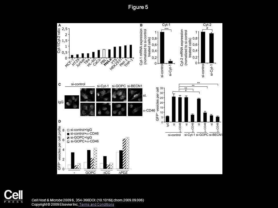 Figure 6 Cell Host & Microbe 2009 6, 354-366DOI: (10.1016/j.chom.2009.09.006) Copyright © 2009 Elsevier Inc.