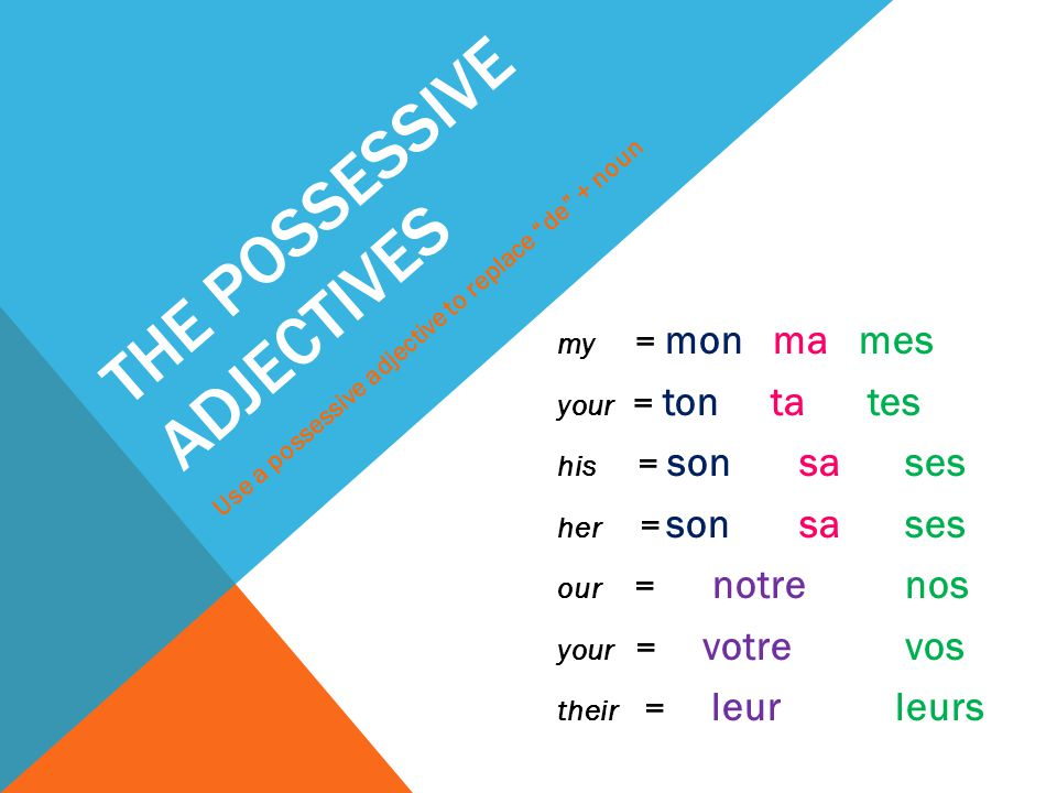 THE POSSESSIVE ADJECTIVES my = mon ma mes your = ton ta tes his = son sa ses her = son sa ses our = notre nos your = votre vos their = leur leurs Use a possessive adjective to replace de + noun