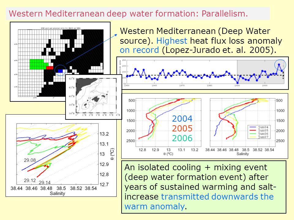 Western Mediterranean deep water formation: Parallelism.