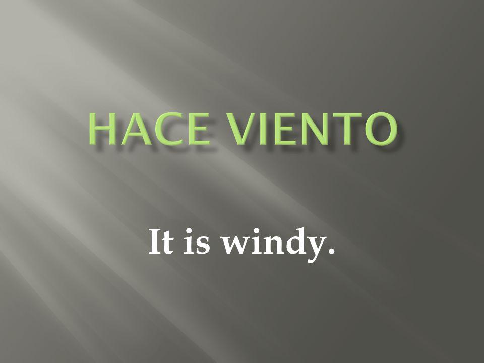 It is windy.