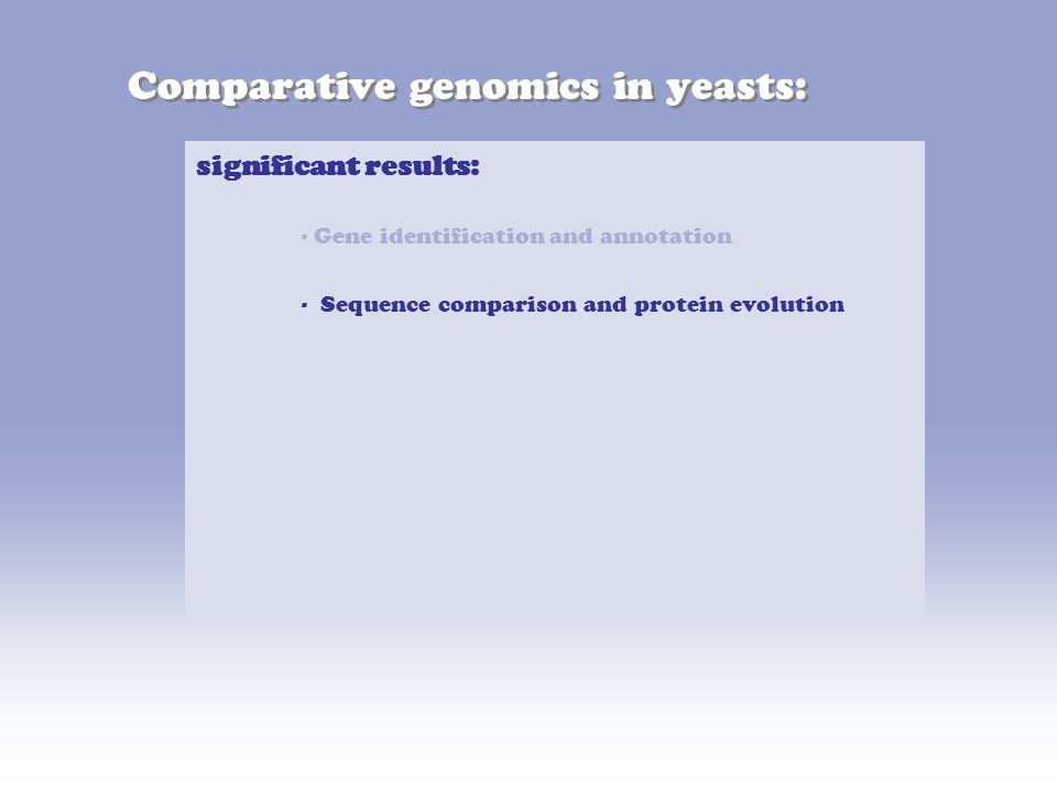 Comparative genomics in yeasts: significant results: - Gene identification and annotation - Sequence comparison and protein evolution
