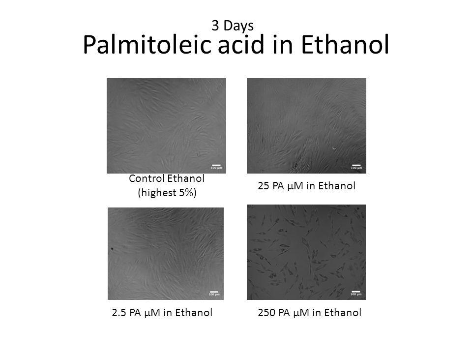 3 Days 2.5 PA μM in Ethanol 25 PA μM in Ethanol 250 PA μM in Ethanol Control Ethanol (highest 5%) Palmitoleic acid in Ethanol