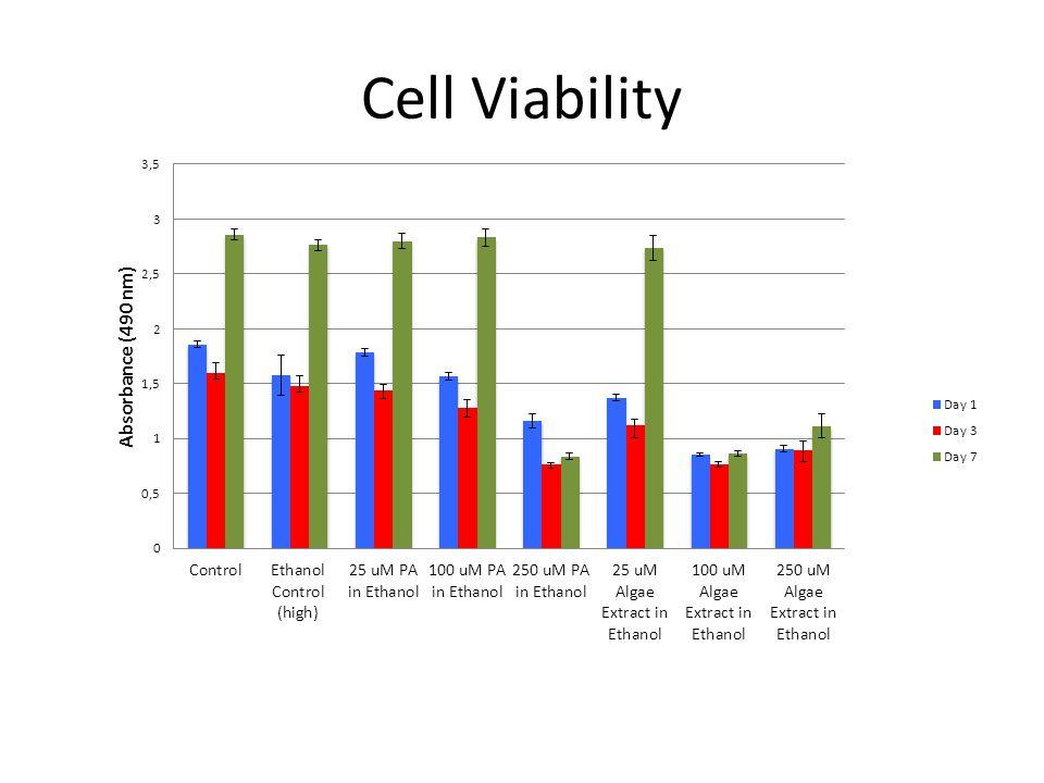 Cell Viability