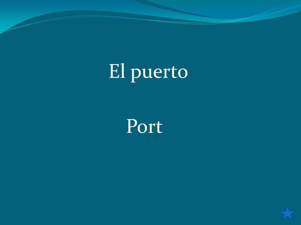 El puerto Port