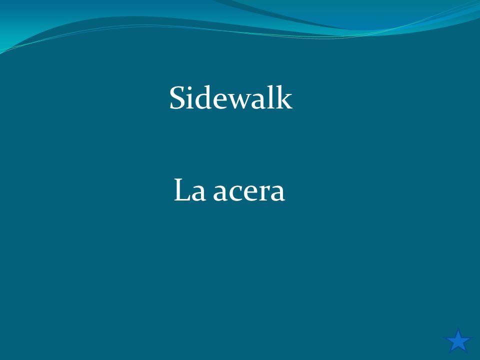 Sidewalk La acera