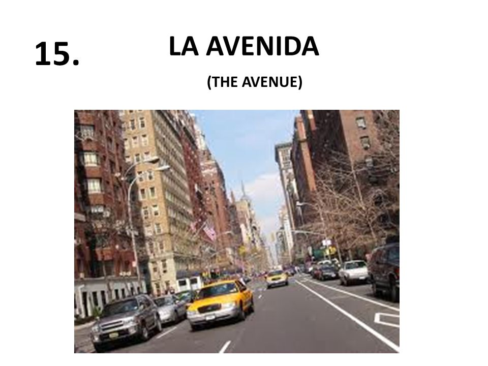 LA AVENIDA 15. (THE AVENUE)