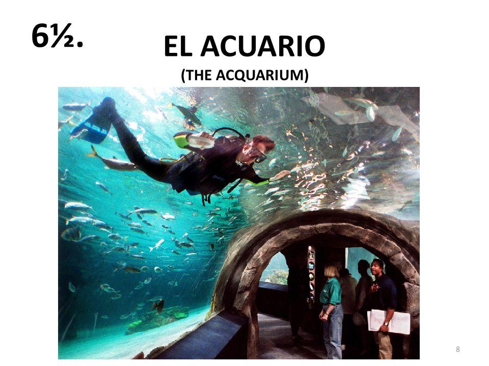 EL ACUARIO 8 6½. (THE ACQUARIUM)