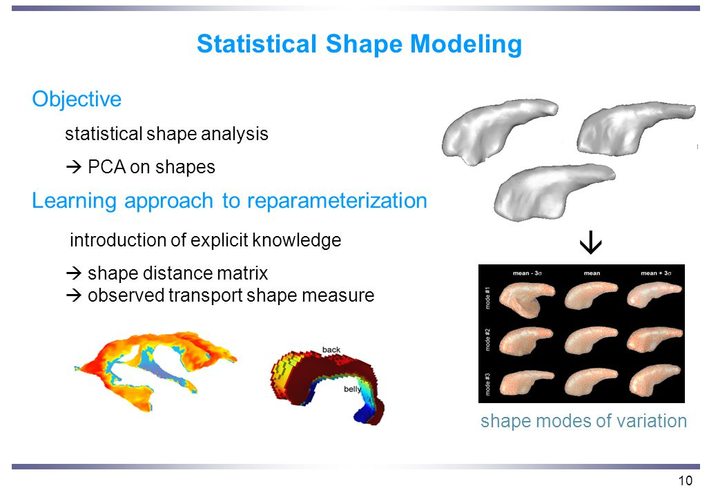 10 Statistical Shape Modeling Objective statistical shape analysis  PCA on shapes Learning approach to reparameterization introduction of explicit knowledge  shape distance matrix  observed transport shape measure  shape modes of variation