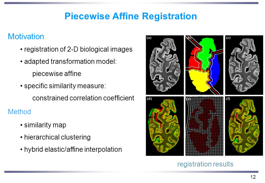 12 Piecewise Affine Registration Motivation registration of 2-D biological images adapted transformation model: piecewise affine specific similarity measure: constrained correlation coefficient Method similarity map hierarchical clustering hybrid elastic/affine interpolation registration results