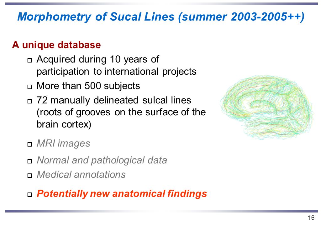 16 A unique database o Acquired during 10 years of participation to international projects o More than 500 subjects o 72 manually delineated sulcal lines (roots of grooves on the surface of the brain cortex) o MRI images o Normal and pathological data o Medical annotations o Potentially new anatomical findings Morphometry of Sucal Lines (summer 2003-2005++)