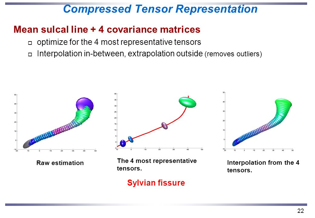 22 Compressed Tensor Representation Mean sulcal line + 4 covariance matrices o optimize for the 4 most representative tensors o Interpolation in-between, extrapolation outside (removes outliers) Sylvian fissure The 4 most representative tensors.