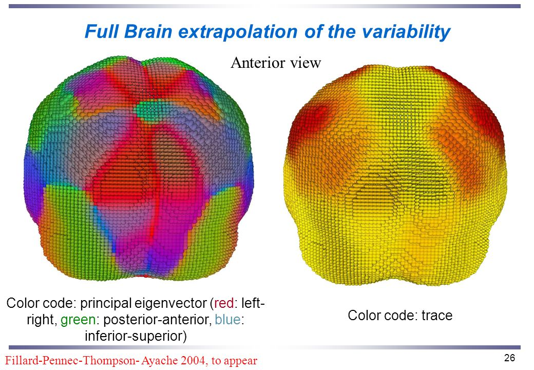 26 Full Brain extrapolation of the variability Color code: principal eigenvector (red: left- right, green: posterior-anterior, blue: inferior-superior) Color code: trace Anterior view Fillard-Pennec-Thompson- Ayache 2004, to appear