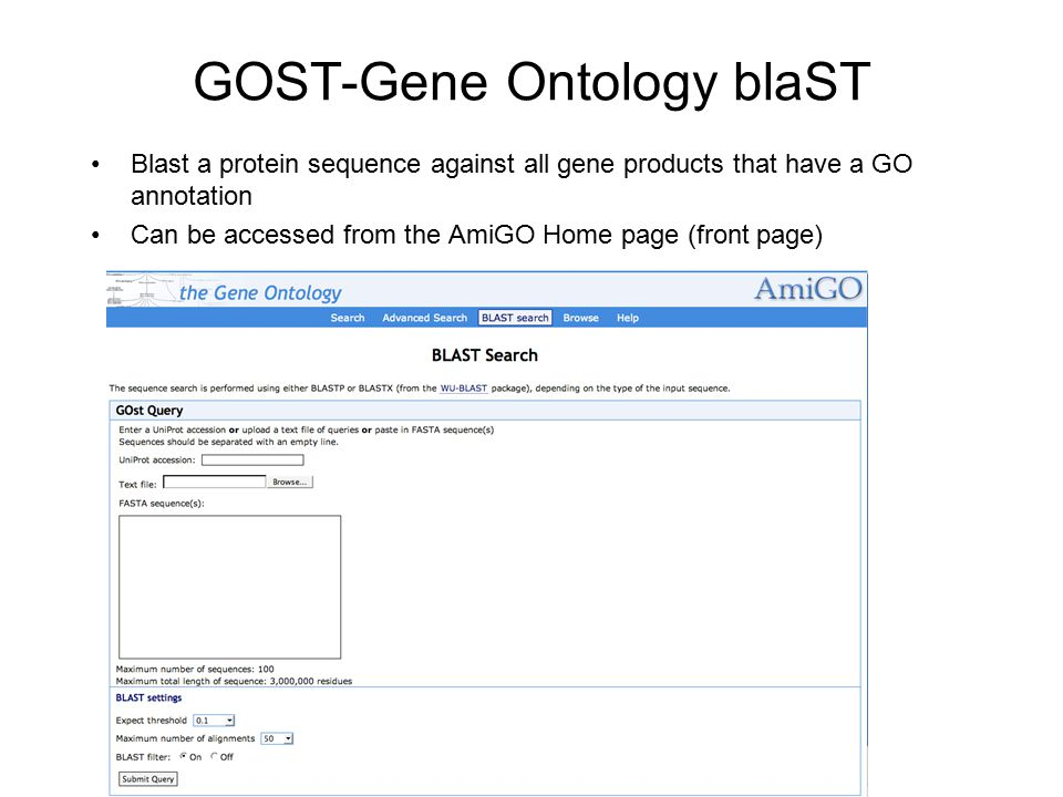 GOST-Gene Ontology blaST Blast a protein sequence against all gene products that have a GO annotation Can be accessed from the AmiGO Home page (front