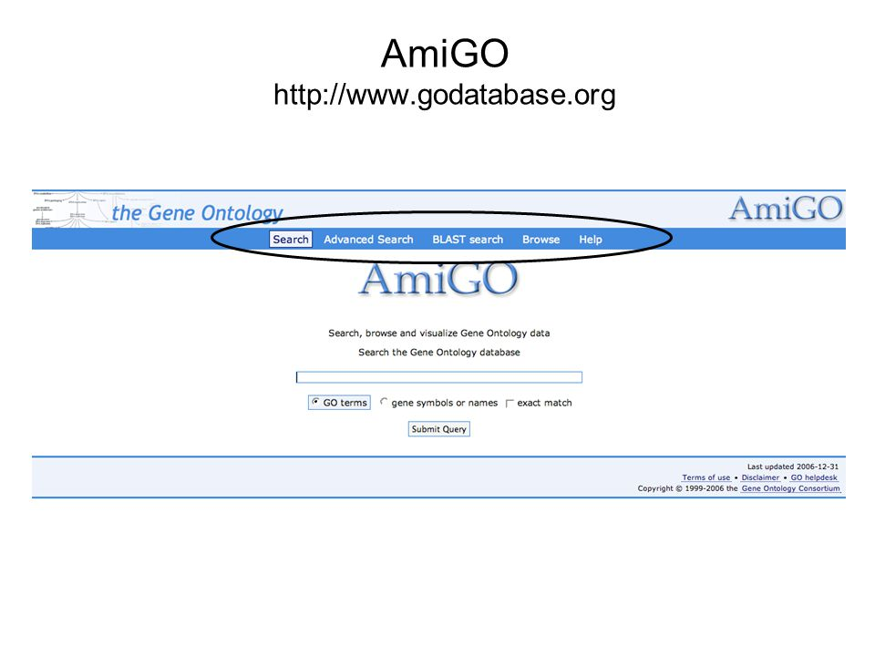 AmiGO http://www.godatabase.org