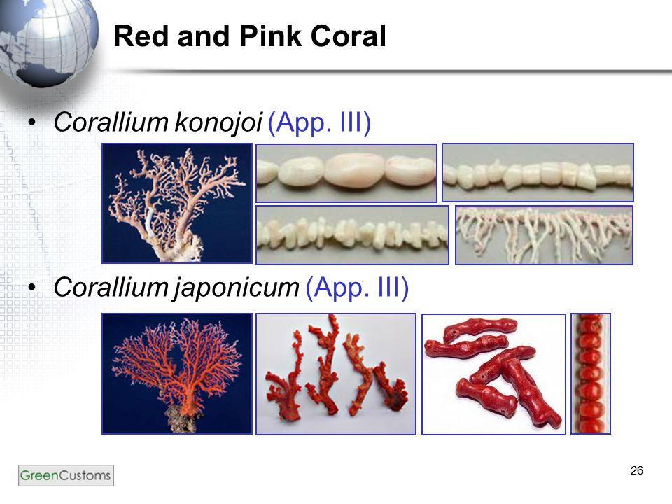 26 Red and Pink Coral Corallium konojoi (App. III) Corallium japonicum (App. III)