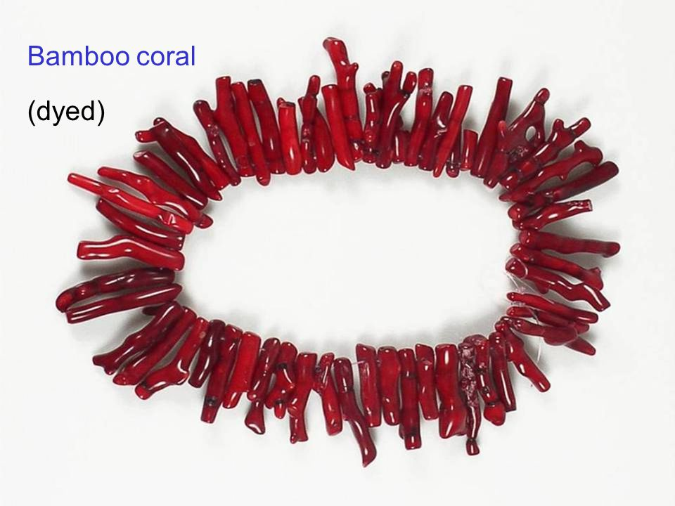 33 Bamboo coral (dyed)