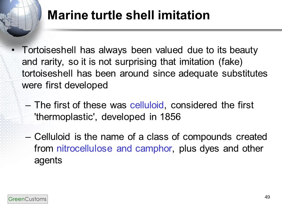49 Marine turtle shell imitation Tortoiseshell has always been valued due to its beauty and rarity, so it is not surprising that imitation (fake) tortoiseshell has been around since adequate substitutes were first developed –The first of these was celluloid, considered the first thermoplastic , developed in 1856 –Celluloid is the name of a class of compounds created from nitrocellulose and camphor, plus dyes and other agents