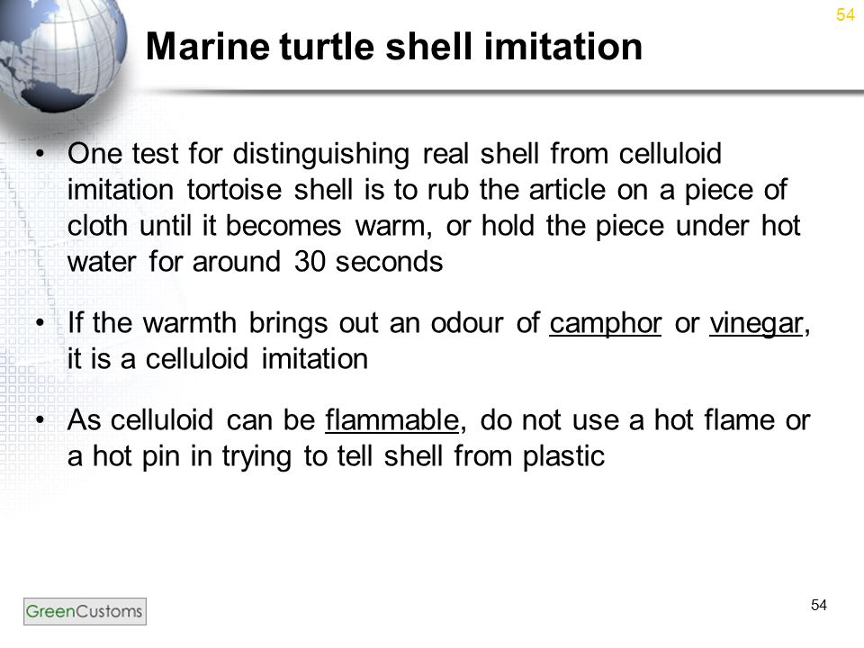 54 Marine turtle shell imitation One test for distinguishing real shell from celluloid imitation tortoise shell is to rub the article on a piece of cloth until it becomes warm, or hold the piece under hot water for around 30 seconds If the warmth brings out an odour of camphor or vinegar, it is a celluloid imitation As celluloid can be flammable, do not use a hot flame or a hot pin in trying to tell shell from plastic 54
