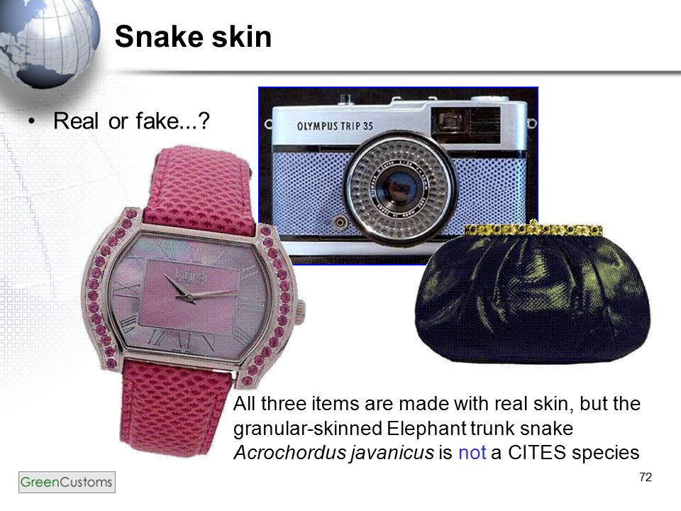 72 Snake skin Real or fake...? All three items are made with real skin, but the granular-skinned Elephant trunk snake Acrochordus javanicus is not a C