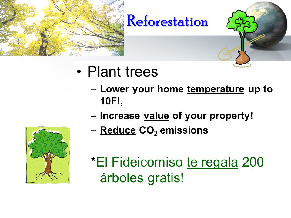 Reforestation Plant trees –Lower your home temperature up to 10F!, –Increase value of your property! –Reduce CO 2 emissions *El Fideicomiso te regala