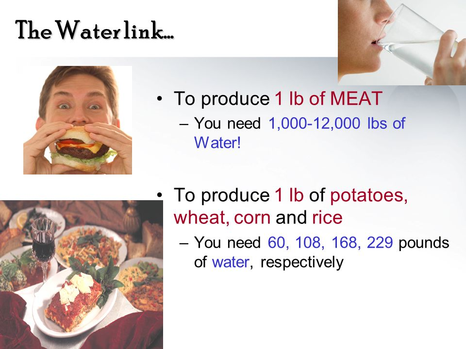 The Water link… To produce 1 lb of MEAT –You need 1,000-12,000 lbs of Water! To produce 1 lb of potatoes, wheat, corn and rice –You need 60, 108, 168,