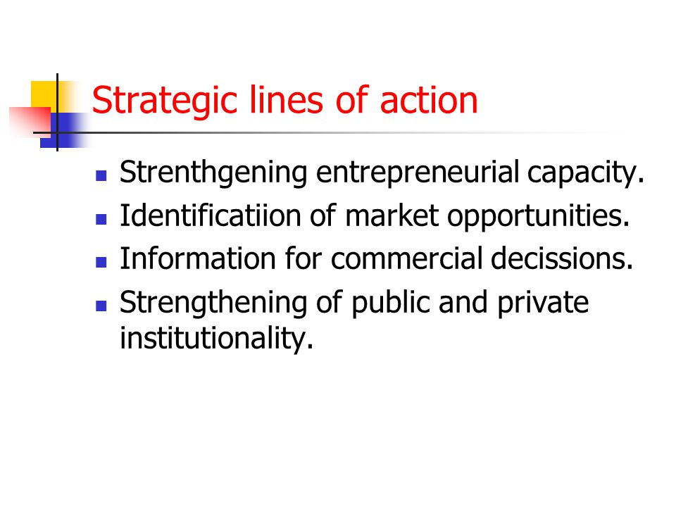 Strategic lines of action Strenthgening entrepreneurial capacity.