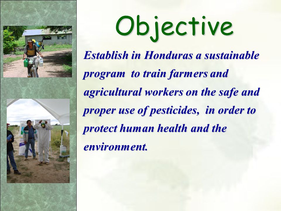 Performance Indicators Achieve a change of attitudes in the trained groups reducing the numbers of pesticides related accidents in Honduras.